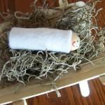 """Away in a Manger"" Craft – Guest Post by Jocelyn"
