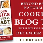 Beyond Basics with Natural Yeast Review