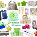 Winter Awards Giveaway – $750+ in Amazing Eco-Friendly Products