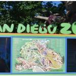 San Diego Zoo – Kid Free October