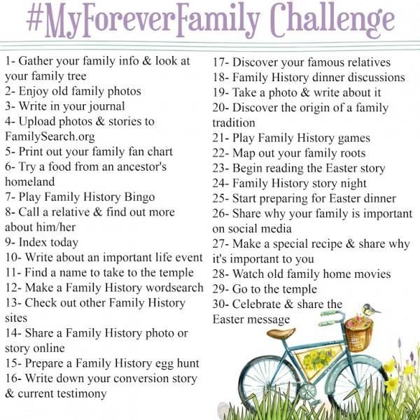 finalfamilychallenge