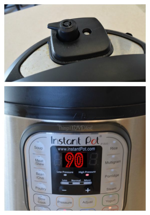 Delicious Instant Pot Pork Roast