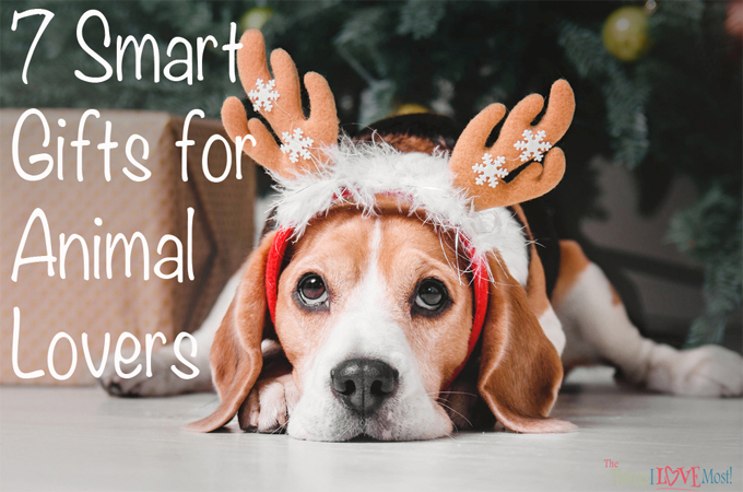 7 Smart Gifts for Animal Lovers {Guest Post}
